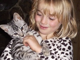 Here's Princess, our first silver Bengal and my daughter Rosy, still firm friends 7 years later. Princess sleeps in Rosy's bed under the duvet, often with her head on the pillow!