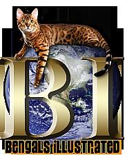 Bengalsillustratedlinkback