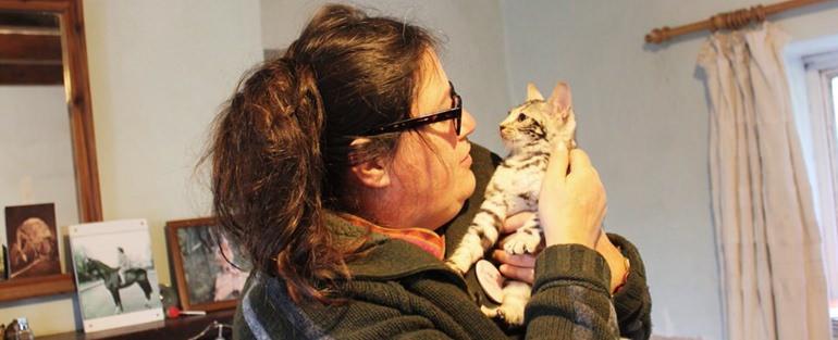 Jacie morris - silverstorm kitten_1